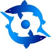 Tubarão dois Imagem de Stock Royalty Free