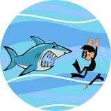 Tubarão e mergulhador Foto de Stock