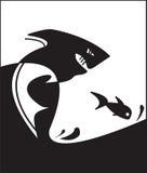 Tubarão e peixes Imagem de Stock
