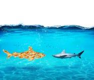 Tubarão grande feito dos peixes dourados O conceito da unidade é força, trabalhos de equipa e parceria imagem de stock royalty free