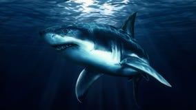 Tubarão no mar ilustração royalty free