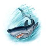 Tubarão no oceano Foto de Stock Royalty Free