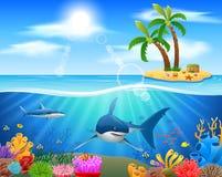 Tubarões e recifes de corais no mar foto de stock royalty free