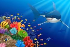 Tubarões e recifes de corais no mar fotografia de stock royalty free