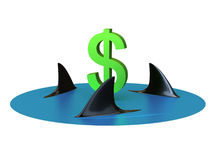 Tubarões do dinheiro Fotografia de Stock