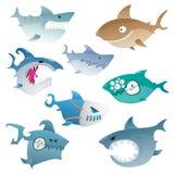 Tubarões irritados Imagem de Stock Royalty Free