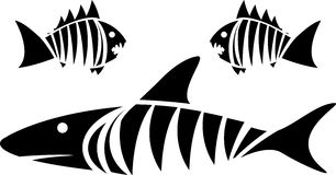 Tubarão de tigre e piranhas Fotografia de Stock Royalty Free
