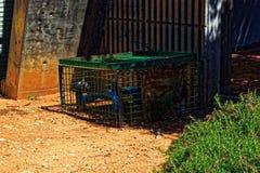 Tubatura dell'acqua in una gabbia fotografie stock libere da diritti