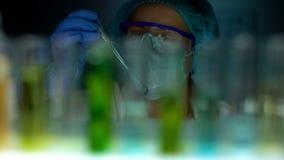 Tube de participation d'assistant de laboratoire avec le liquide bleu d'essai, v?rifiant la r?action d'exp?rience photo stock