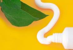 Tube de saveur de menthe de pâte dentifrice Image libre de droits