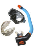 Tube for diving (snorkel), big sea shell and mask Royalty Free Stock Photo