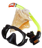Tube for diving (snorkel), big sea shell and mask Royalty Free Stock Photography