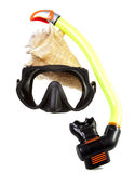 Tube for diving (snorkel), big sea shell and mask Royalty Free Stock Images
