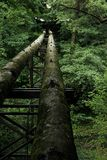 Tube in forest. Vertical background of tube above  river in forest Royalty Free Stock Photos