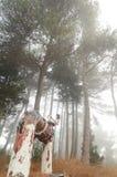 Tube multycolored modifié abandonné dans une forêt Images stock