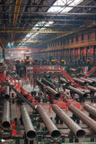 Tube Rolling plant Royalty Free Stock Photos