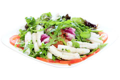 Tube Squid Salad Royalty Free Stock Photography