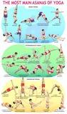 Tubería Asans de la yoga 30 Foto de archivo libre de regalías