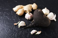 Black radish and garlic Stock Photo