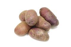 Tuber fresh potatoes Royalty Free Stock Photo