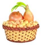 Tuber onion in a wicker basket Stock Photo