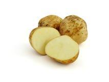 Tuber potato Royalty Free Stock Images