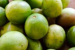 Tuberosa dello Spondias - la frutta stagionale brasiliana ha chiamato Umbu o Imbu Prugna del Brasile Frutta regionale Fotografia Stock