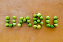 Tuberosa dello Spondias - la frutta stagionale brasiliana ha chiamato Umbu o Imbu Prugna del Brasile Frutta regionale scrittura Fotografia Stock Libera da Diritti