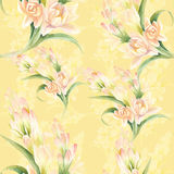 Tuberose - branches. Seamless pattern. medicinal, perfumery and Royalty Free Stock Photography