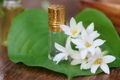 Tuberose or Rajnigandha of Southeast Asia with herbal extract Royalty Free Stock Photography