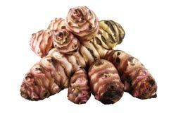 tuberosus de topinambour de helianthus images stock