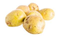 Tubers of a potato Royalty Free Stock Images