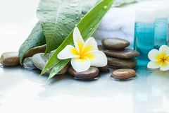 Tubes with Body Oil. Flower and Stones. Spa concept Stock Photos