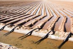 Tubes de canal et de siphon d'irrigation Photos libres de droits