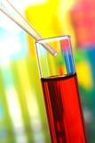Tubes à essai dans le laboratoire de la Science Photographie stock libre de droits