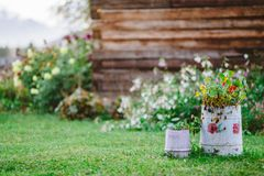 Tubes with flowers in the courtyard of a village house in the rain stock photo