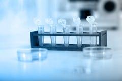 Tubes micro avec les échantillons biologiques dans le laboratoire Photos stock