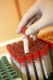 Tubes témoin d'analyse de sang Image libre de droits