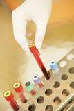 Tubes témoin d'analyse de sang Photos stock