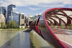 Tubformig fredbro i Calgary fotografering för bildbyråer
