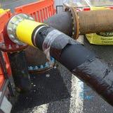 Tubi terrestri che si nascondono Fotografia Stock