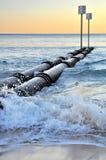 Tubi virili della caditoia Fotografia Stock