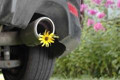 Tubo de cola de un coche Imagenes de archivo