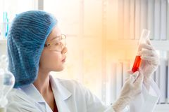 Tubo de ensaio asiático da terra arrendada do cientista ou do químico da mulher no laboratório imagens de stock royalty free