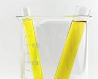 Tubo de ensaio com líquido amarelo (líquido, água) na taça Fotografia de Stock