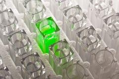 Tubo de ensaio verde Imagem de Stock