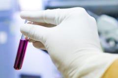 Tubo de ensayo en mano del científico en laboratorio Imágenes de archivo libres de regalías