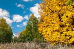 Tubo de la central nuclear en fondo y árboles en parque Imagen de archivo libre de regalías
