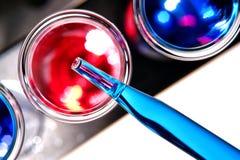 Tubo de prueba en laboratorio de investigación de la ciencia Imágenes de archivo libres de regalías