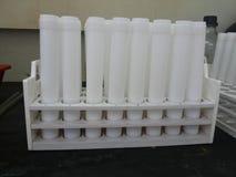 tubo del digestor Fotografía de archivo